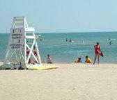 beach_news