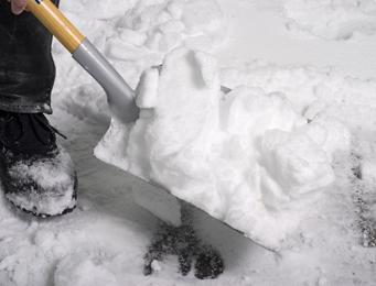 snow shoveling promo 1544956